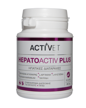 Activet® Hepatoactiv Plus